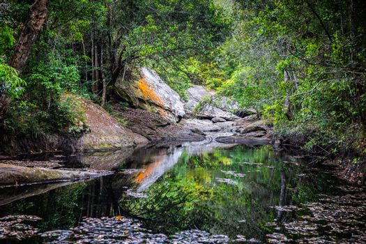 Rock pond with reflection water from drought river inside tropical rainforest in summer, Phu Kradueng, Thailand.