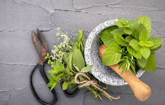 Alternative medicine fresh herbs in the stone mortar . Food ingredients and seasoning  peppermint , rosemarry and lemon balm  in a stone mortar set up on dark concrete background.