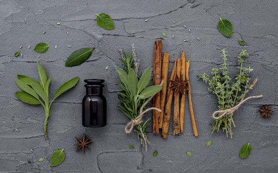 Bottle of essential oil with fresh herbal sage, rosemary, lemon thyme ,thyme ,green mint and peppermint setup with flat lay on dark concrete background.