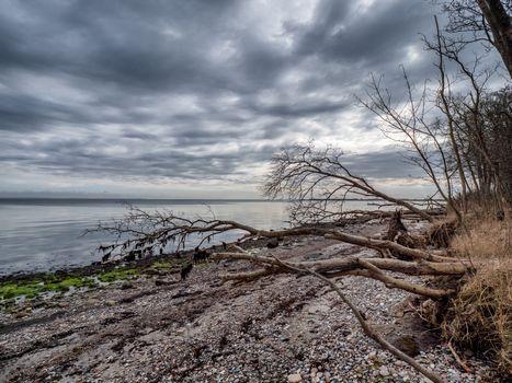 Rural coastline on the island Als near Fynshav in Denmark