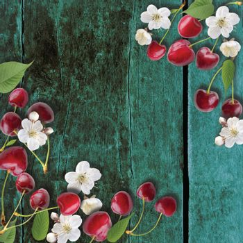 Cherries background. Cherries on wood top view. Red summer cherry berries, cherry blossom and leaves on a dark blue wooden background.