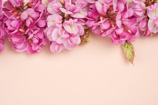 flowering branch Robinia neomexicana with pink flowers on a beige background, top view, copy space