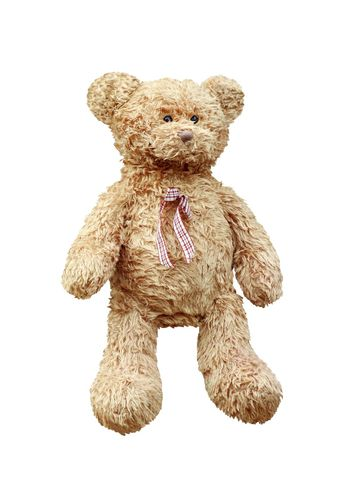 Teddy Bear brown, Teddy Bear doll isolated on white background