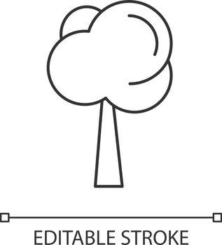 Tree linear icon