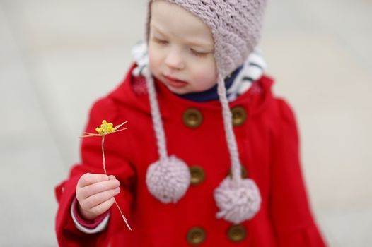 Adorable little girl holding straw flower as part of Easter tradition in Lithuania