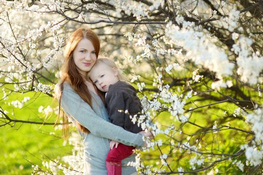 Young mother and her child in blooming cherry garden on beautiful spring day