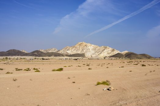 Panorama with a village in the desert and mountains in Ras Al Jinz, Oman