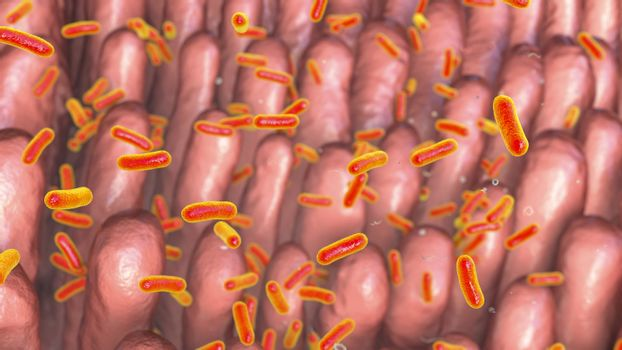 Intestinal villi with enteric bacteria, 3D illustration