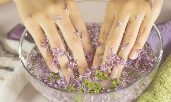 SPA, manicure. Hands of a woman in a bath with flowers. Sensuality, skincare, feminine, salon, wash, wealth, therapy, cosmetics, treatment, relax, dayspa, aromatherapy
