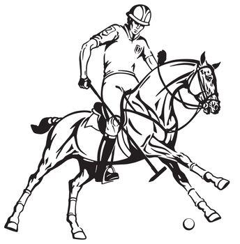 equestrian polo