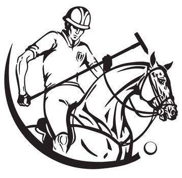equestrian sport polo