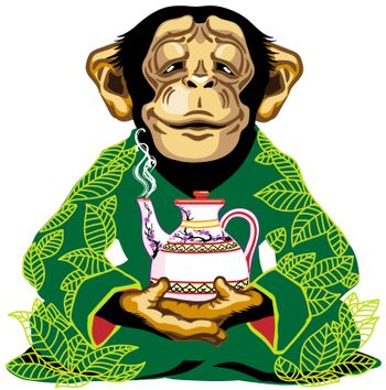 cartoon chimp great ape or chimpanzee monkey wearing kimono robe with green tea leaves, sitting in lotus yoga pose and holding a teapot. Spiritual harmony and peaceful emotion. Front view. Isolated vector illustration