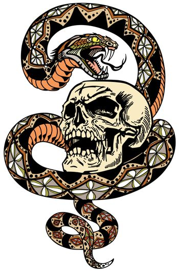 the snake coiled round the skull