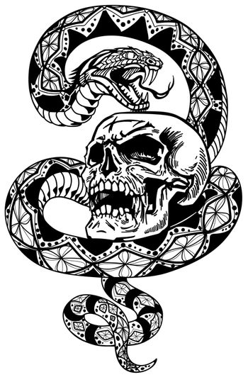 the snake coiled round the skull black and white