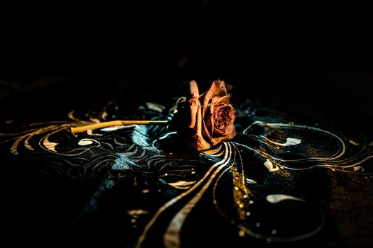 A wilting rose signifies lost love, divorce, or a bad relationship, dead rose on dark background with smoke. Selective focus