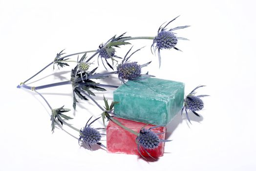 soaps off various shades with a beautiful lavender flower