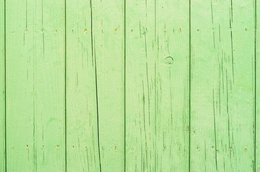 Green colored wooden planks background texture with copy space