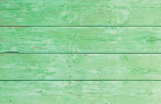 Green colored wood backdrop texture with copy space