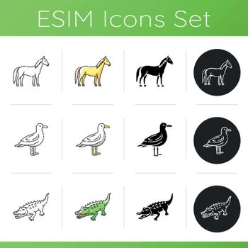 Different animal species icons set. Linear, black and RGB color styles. Wild horse, seagull and alligator. Common bird, land animal and semiaquatic creature. Isolated vector illustrations