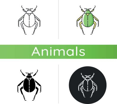 Scarab beetle icon. Linear black and RGB color styles. Small arthropod, egyptian bug, desert inhabitant. Zoology, entomology, ancient Egypt culture. Dung beetle isolated isolated vector illustrations