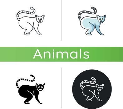 Ring tailed lemur icon. Linear black and RGB color styles. Adorable exotic animal, tropical rainforest wildlife. Native Madagascar inhabitant. Cute lemur catta isolated isolated vector illustrations