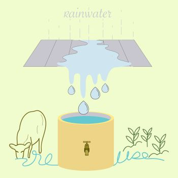 Rainwater Reuse