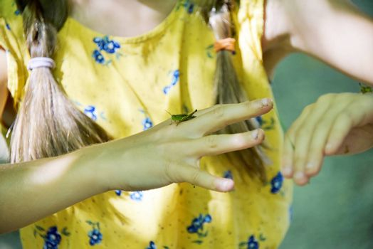 Brasov, Romania - Aug 2019: Young girl plays with a grasshopper