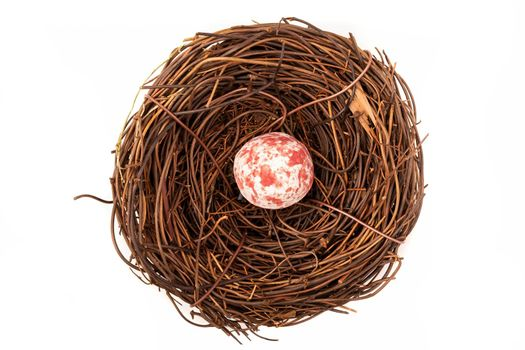 A bird nest with one small spotted pink and white egg.