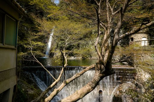 wide shot of  Nunobiki waterfalls in Japan with dam wall in foreground as silky water falls