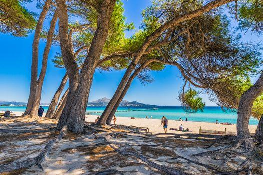Majorca beach at bay of Alcudia, Spain Mediterranean Sea