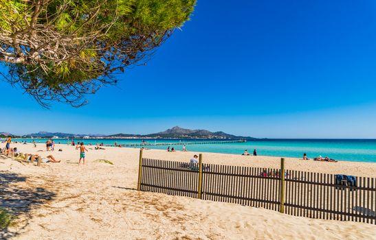 Beautiful sand beach at seaside bay of Alcudia on Majorca island, Spain