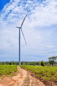Wind turbine power at daylight