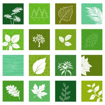 Collection of nature leaves icons,vector illustration