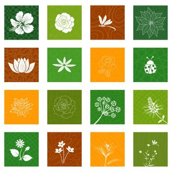 White flowers and leaves icons set isolated on different background for decorative graphic design,vector illustration