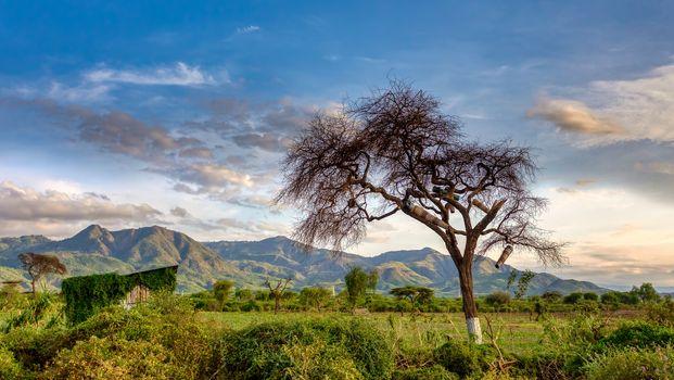African landscape near Arba Minch. Ethiopia Southern Nations Region, Africa Omo valley wilderness