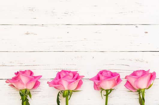 Beautiful pink rose flowers frame on white wooden background with copy space