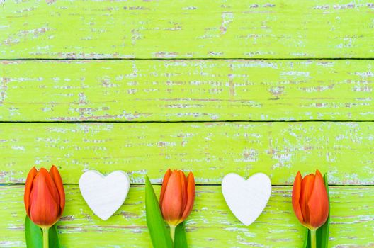 Frame with red tulip spring flowers and white hearts on green wooden background with copy space