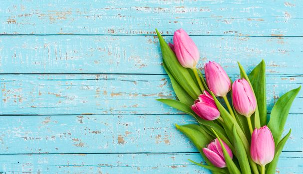 Beautiful tulip flowers on turquoise wooden background with copy space