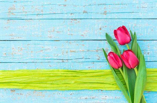 Red tulips on blue wooden background with green ribbon border and copy space