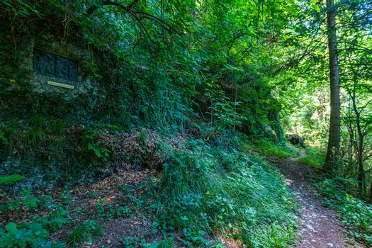 Along the panorama path in Heiligenberg at the beautiful Lake Constance