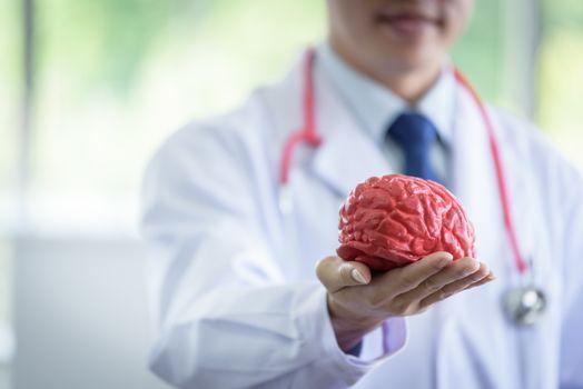 Senior asian scientist man has holding brain model.
