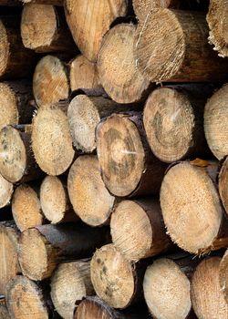 Background image, wood pile