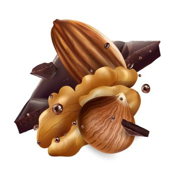 Hazelnuts, almonds, walnuts and pieces of chocolate on a white background. Realistic vector illustration.