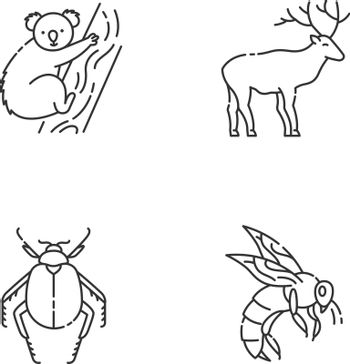 Mammals and insects pixel perfect linear icons set