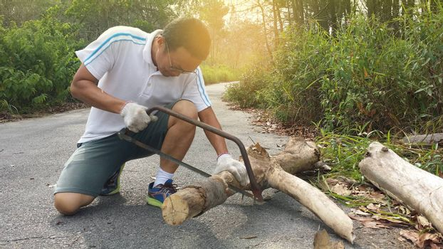 A man cuts a dry branch with a hand saw in the forest
