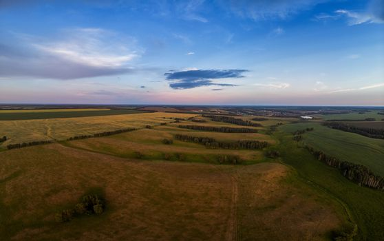 Top aerial view of green fields and meadows in evening summer
