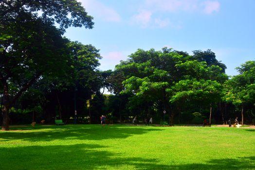 The Icon residences field in Bonifacio Global City, Taguig, Phil