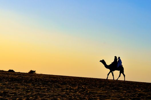 Silhouette of an Arabian camel carrying tourists in Sam Sand Dunes, Thar Desert, Jaisalmer, India. These sand dunes are amongst the most famous ones in Rajasthan.