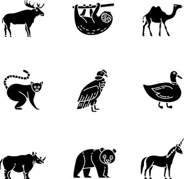 Mammals and birds black glyph icons set on white space