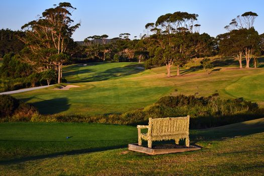 An old bench, antique, weathered, covered with moss and cobweb; A beautiful golf course manicured green grass and golden evening light.